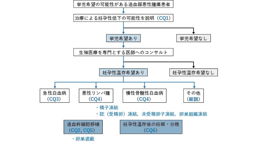 造血器悪性腫瘍における妊孕性温存療法のアルゴリズム